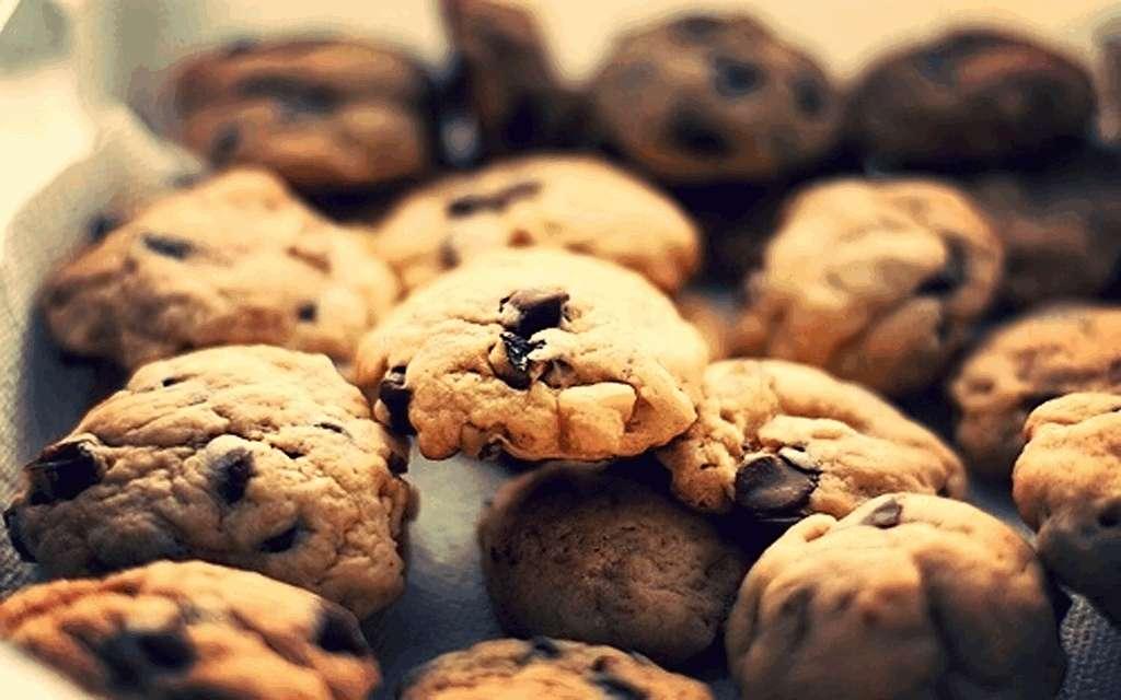Ciasteczka - noclegi-leknica.eu